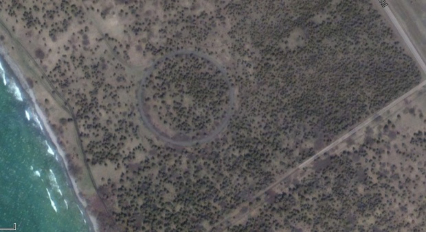 An unusual ring shape in a field near Point Petre...possibly the Lost Ring oF Orenda.