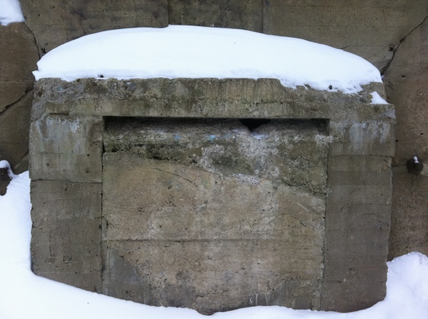 A mysterious concrete structure lies in the woods of Vanier.