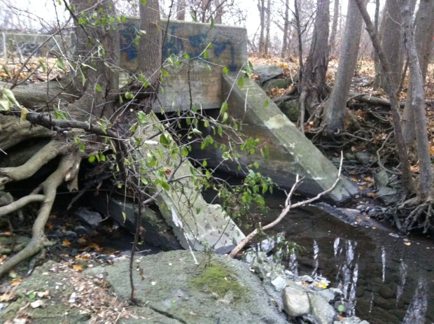 Hidden by trees and bushes in the summer, the old CP line bridge on NCC property where the proposed LRT route is to go on the SJAM parkway would use this exact same old rail line route.