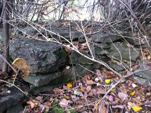 Concealed under the cover of bushes and underbrush, the original stone foundation of a structure is visible. This is most likely the remains of Mondions original home he built in 1786, the oldest known settlement in the Ottawa Valley.