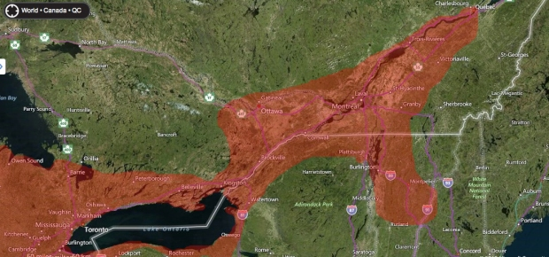 Extent of butternuts along the St. Lawrence River and Lake Ontario.
