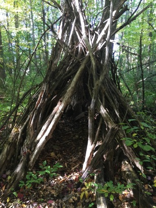 Odd stick huts in the forest off the trails...