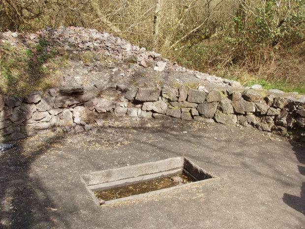 Fulacht_Fiadh_cooking_pit,_Irish_National_Heritage_Park_-_geograph.org.uk_-_1255093